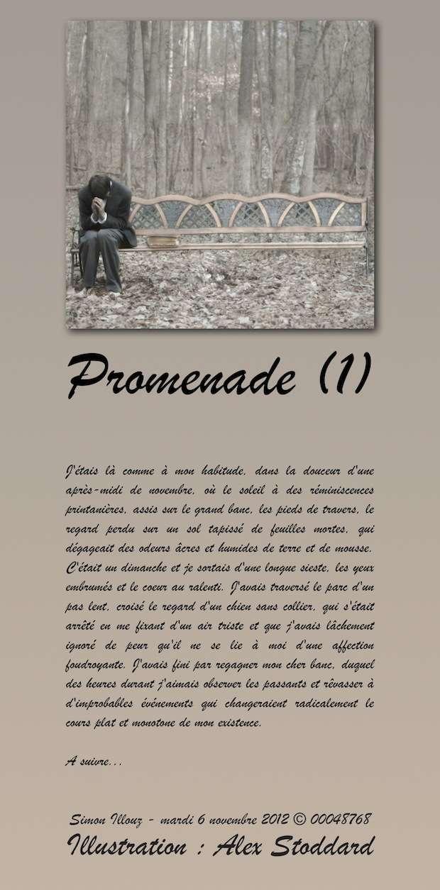 http://img26.imageshack.us/img26/3804/promenade1.jpg