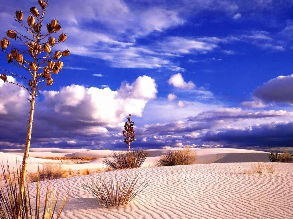 http://img26.imageshack.us/img26/8924/desertez.jpg